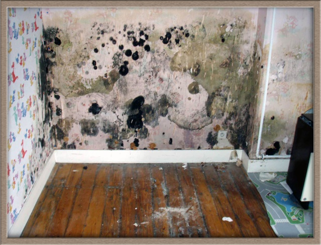 Pht humidit air humide ambiant moisissures condensation - Taux d humidite dans une chambre de bebe ...